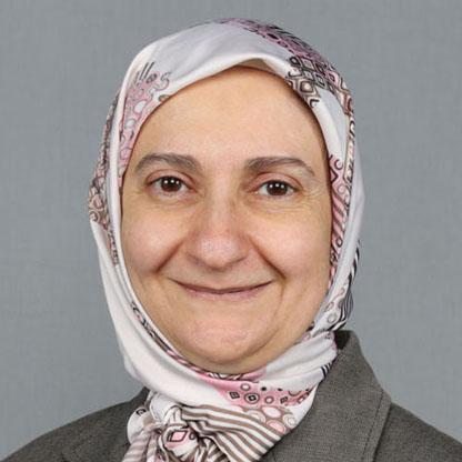 Mirna Ahmed Nachouki picture